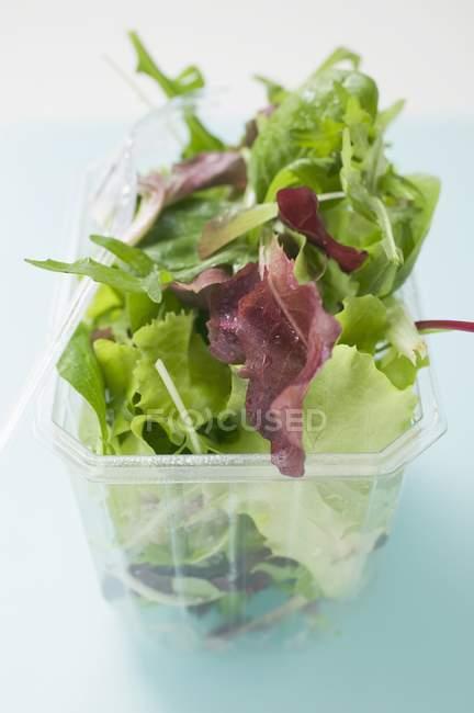 Folhas de salada mistas — Fotografia de Stock