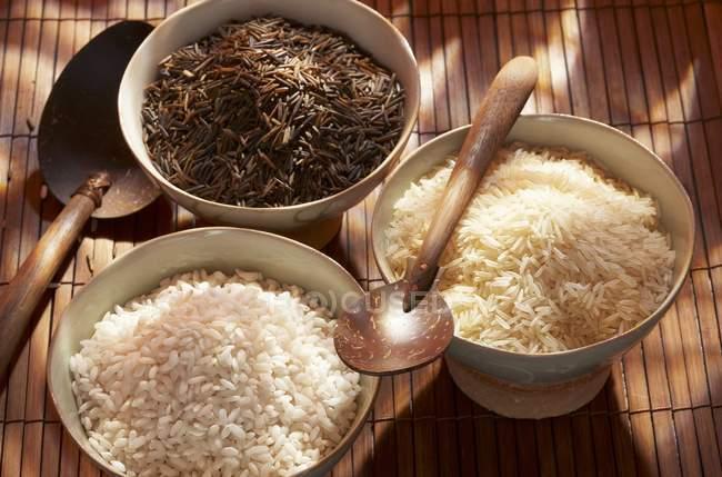 Drei verschiedene Reissorten — Stockfoto