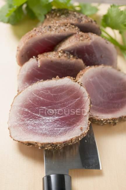 Grelhado de filé de atum temperado — Fotografia de Stock