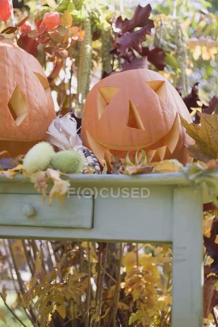 Украшение сада с тыквами — стоковое фото