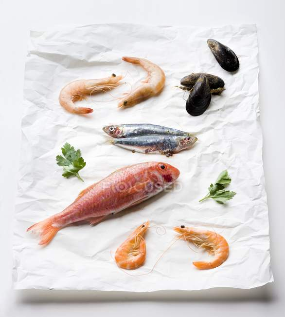 Red mullet on paper — Stock Photo