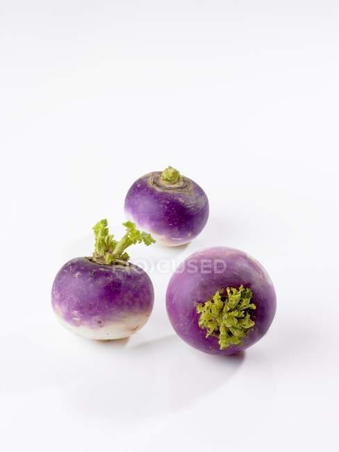 Fresh purple turnips — Stock Photo
