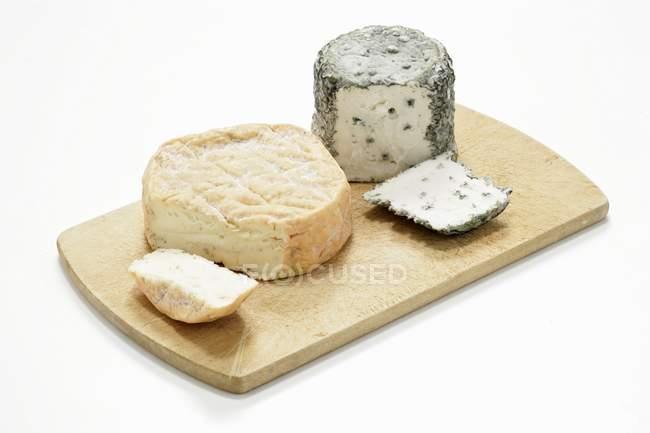 Различные сырого молока сыры — стоковое фото