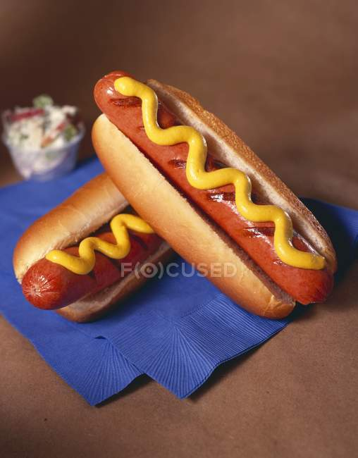 Two Grilled Hot Dogs on Buns — Stock Photo