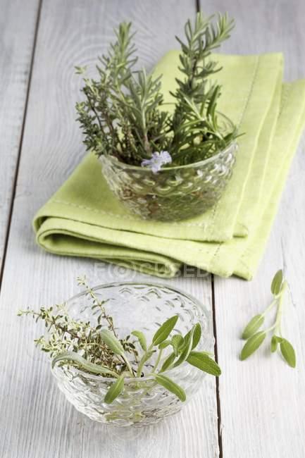 Alecrim fresco com tomilho e sálvia — Fotografia de Stock