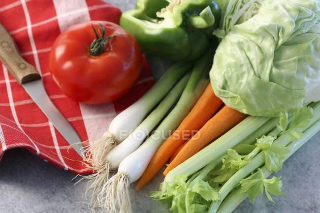 Verduras frescas en toalla sobre superficie gris - foto de stock