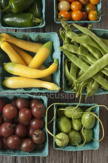 Fresh ripe Vegetables — Stock Photo