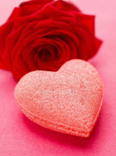 Nahaufnahme von Zuckerherz und roter Rose — Stockfoto