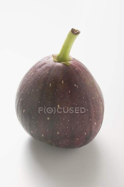 Fresh Purple fig — Stock Photo