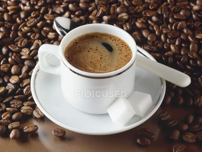 Cup of espresso and coffee beans — Stock Photo