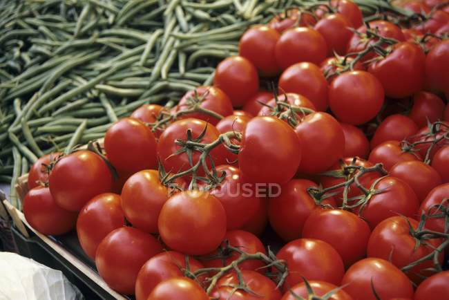 Tomatoes and green beans — Stock Photo
