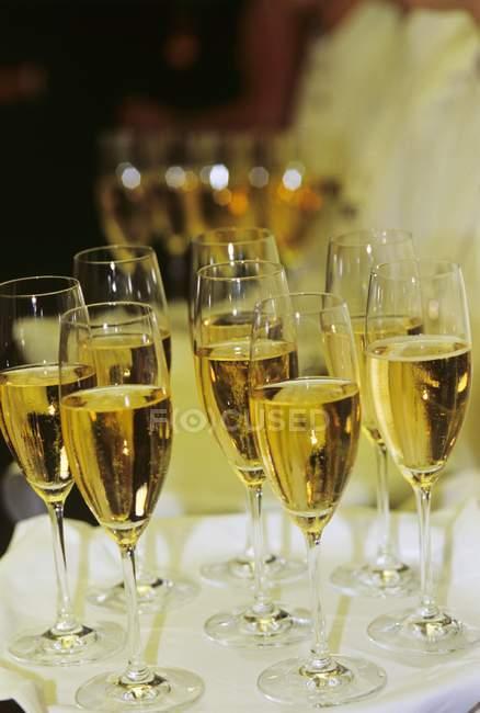 Sparkling wine in elegant glasses — Stock Photo