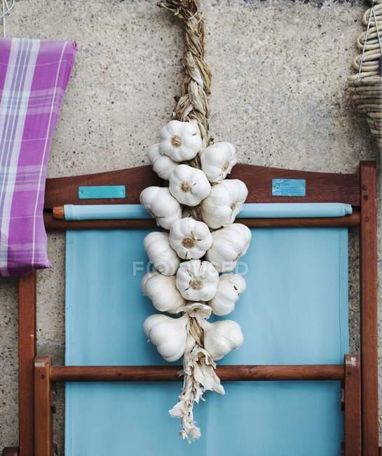 Cuerda de ajo fresco - foto de stock