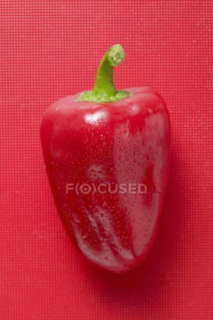 Red pepper with drops of water — Stock Photo