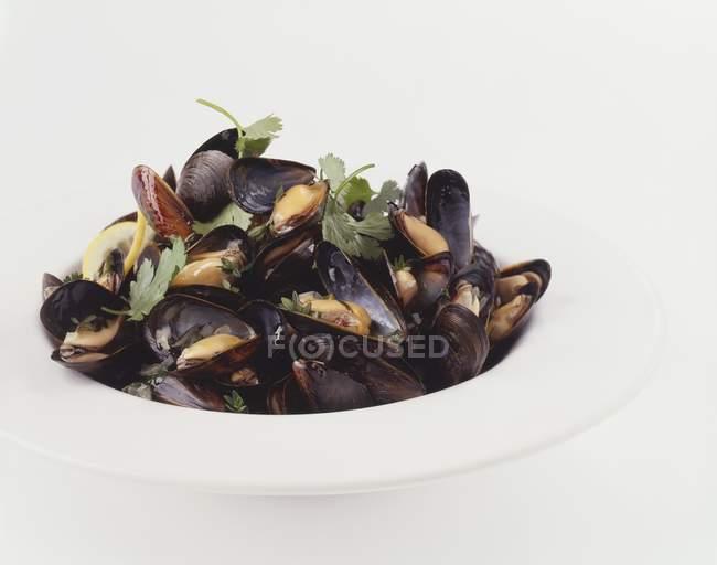 Moules cuites avec du persil — Photo de stock
