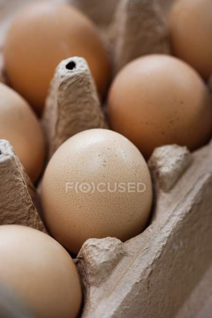 Brown eggs in box — Stock Photo