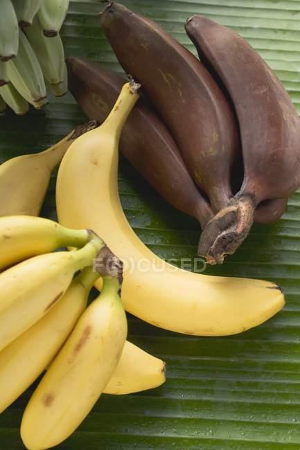 Букети з свіжих банани — стокове фото