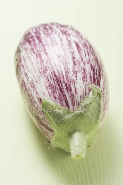 Purple and white striped aubergine — Stock Photo