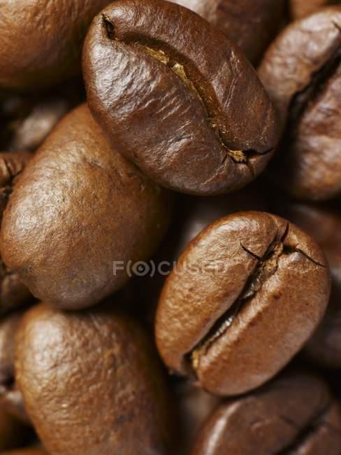Granos de café asados - foto de stock