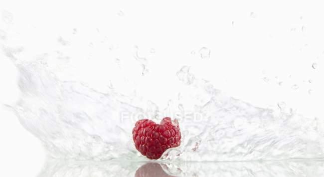 Raspberry with splashing water — Stock Photo