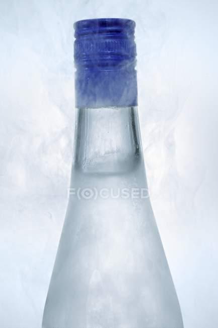 Vista de perto de Ouzo em garrafa gelada — Fotografia de Stock