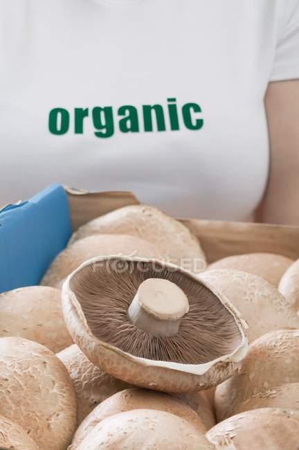 Femme tenant boîte de champignons frais — Photo de stock