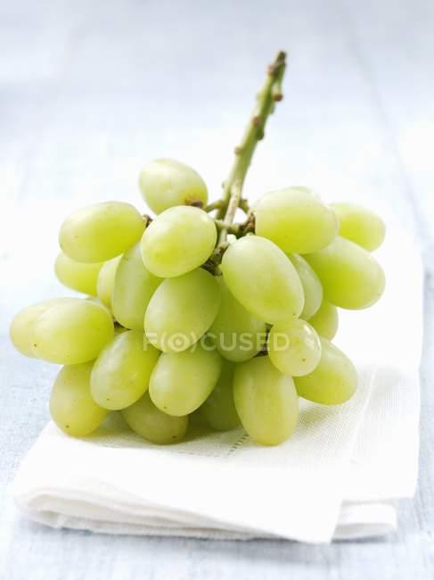 Racimo de uvas verdes - foto de stock