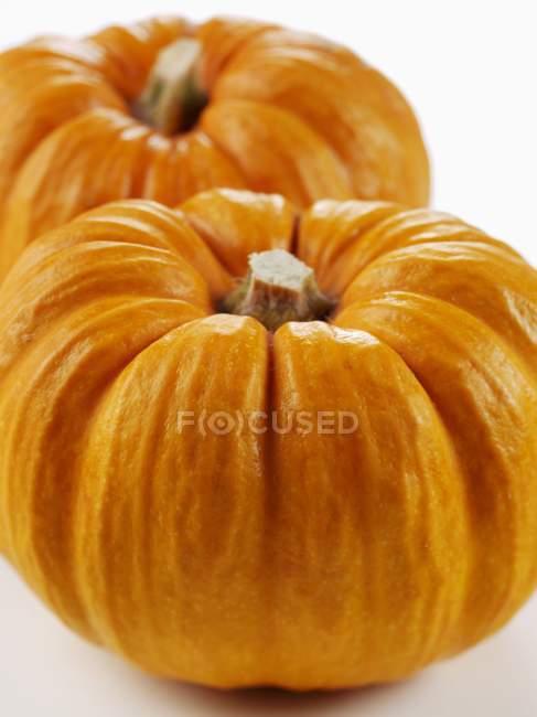 Fresh orange pumpkins — Stock Photo