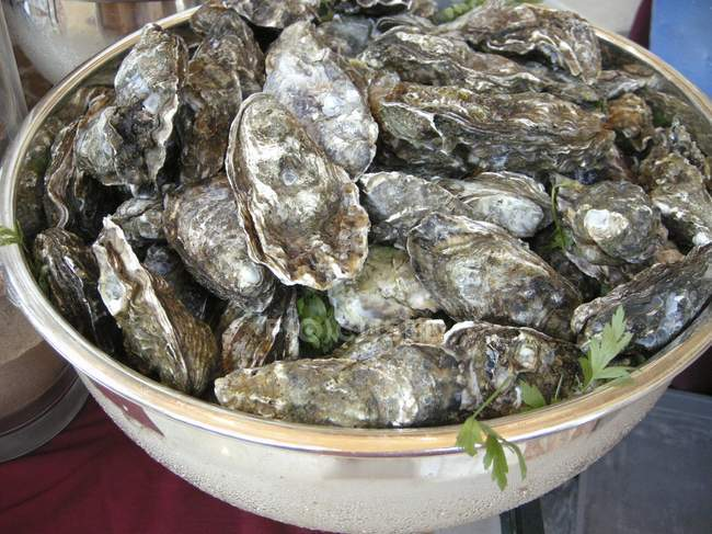 Fresh oysters in bowl, close-up — Stock Photo