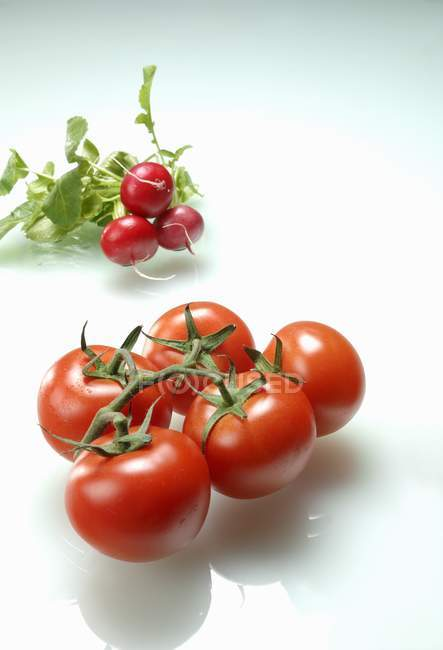 Red Tomatoes and radishes — Stock Photo