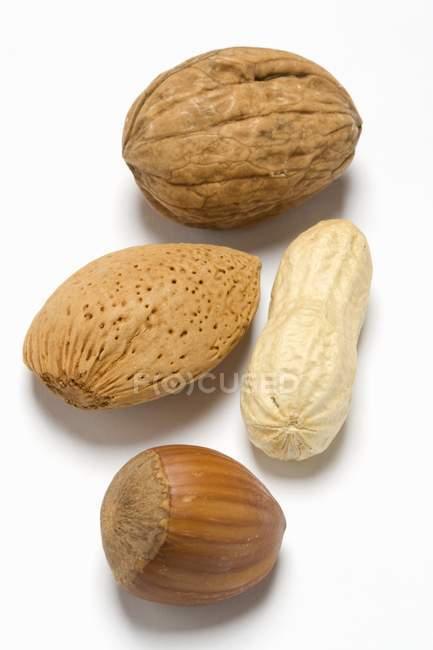 Erdnuss, Walnuss und Mandel — Stockfoto