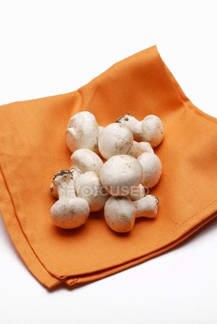 Fresh mnushrooms on a serviette — Stock Photo