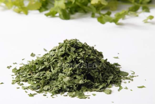 Getrocknete grüne Petersilie — Stockfoto