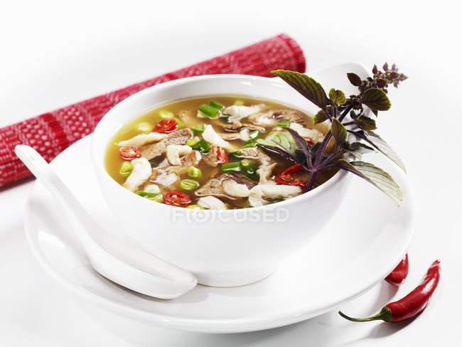 Пикантный суп утка в белый блюдо над пластиной с ложкой на белой поверхности — стоковое фото