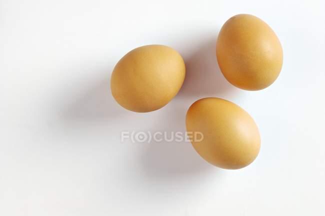 Три яйца коричневые — стоковое фото