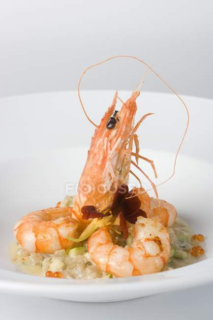 Scampi on a bed of celery with chopped courgette and flowers on white plate — Stock Photo