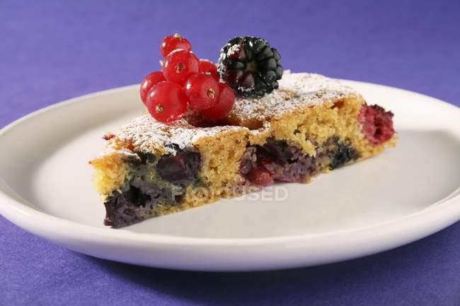 Slice of berry tart on white plate — Stock Photo