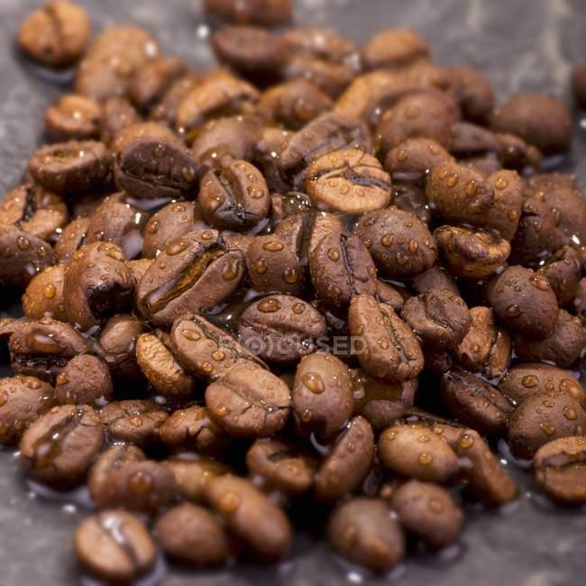 Кава в зернах з крапельками води — стокове фото