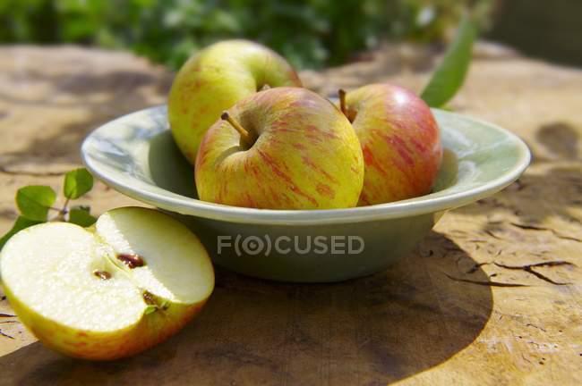 Целые яблоки на тарелке — стоковое фото