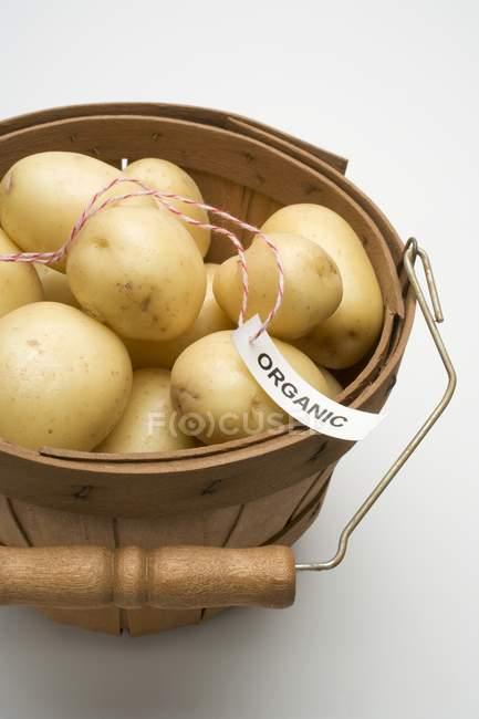Bio-Kartoffeln in Rauhfaser Korb — Stockfoto