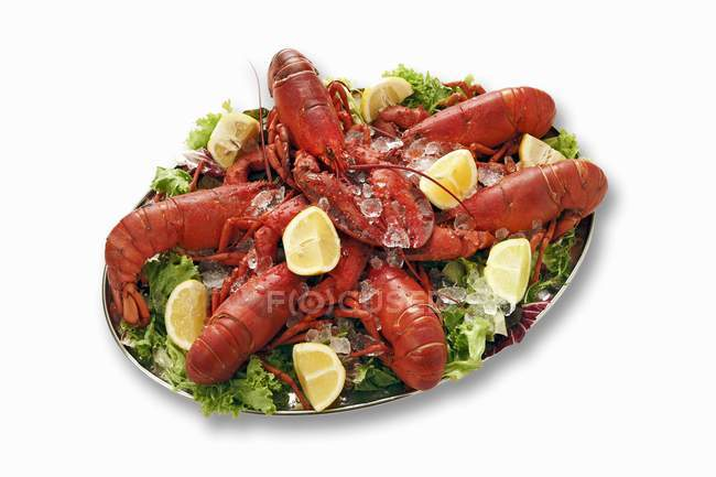 Cooked lobsters on leaves — Stock Photo