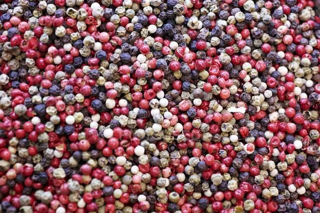 Pimienta multicolor mezclado - foto de stock