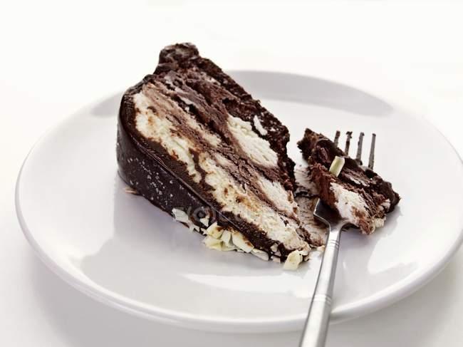 Piece of chocolate cake — стоковое фото