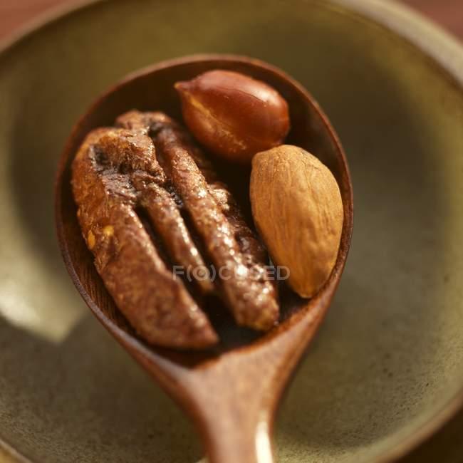 Пряного пекан на ложкою — стокове фото