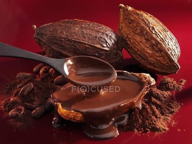 Cacao y salsa de chocolate - foto de stock