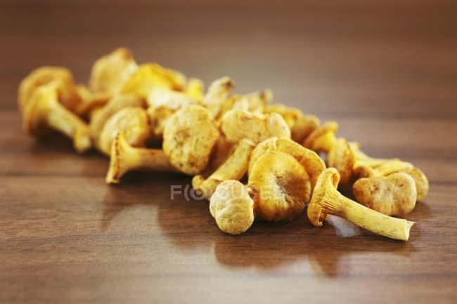 Finferli sul tavolo di legno — Foto stock