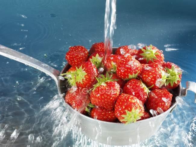 Washing strawberries in sieve — Stock Photo