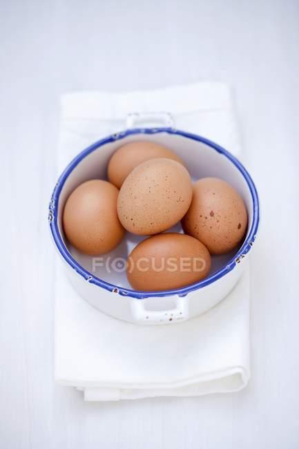 Oeufs frais bruns dans la casserole — Photo de stock