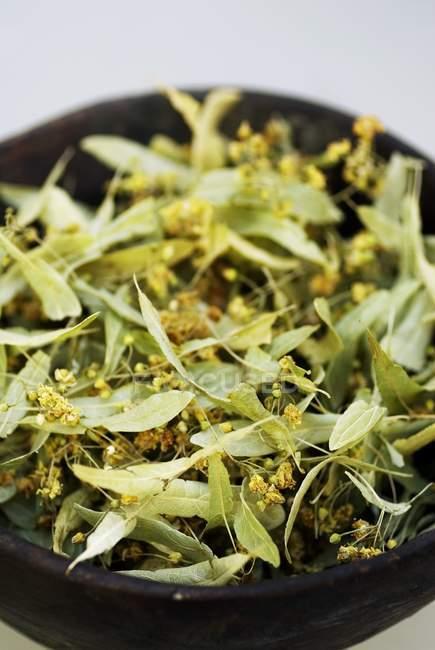 Крупним планом подання сушені вапна квіти в блюдо — стокове фото
