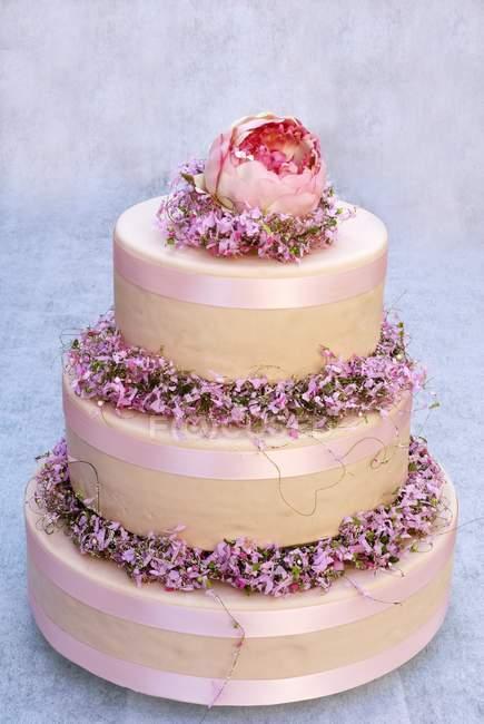 Três camadas de bolo de creme — Fotografia de Stock